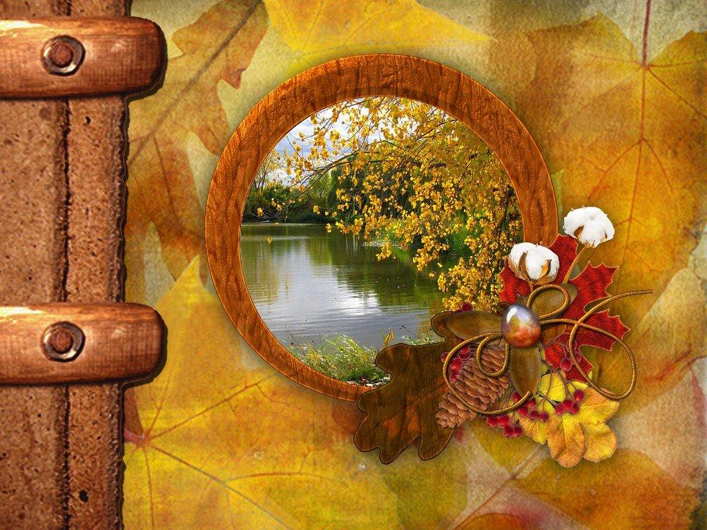 automne dans fond d'écran